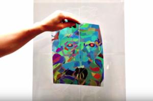 portrait en art polarisé